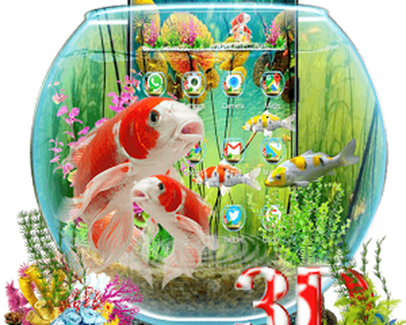3d Aquarium Japaneses Koi Fish Android Free Download