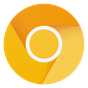 Chrome Canary (instabile) 69.0.3455.0