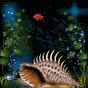 Aquarium Live Wallpaper 1.6