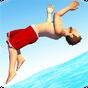 Flip Diving v2.9.11