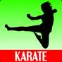 Entrenamiento de Karate 1.00