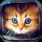 Papel De Parede Gatos Bonitos 3.4