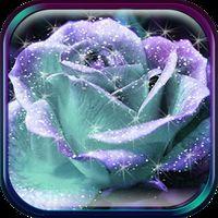 Icône de Roses Fond d'Écran Animé