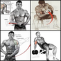 Bodybuilding muscle training tutorial 1.0 APK