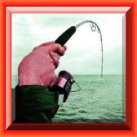 Fisch Fischen Puzle! Icon
