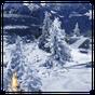Winter Schnee Live Wallpaper 1.2 APK