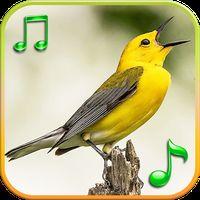 Vogels Geluiden Ringtones icon