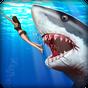 Hunter tubarão irritado