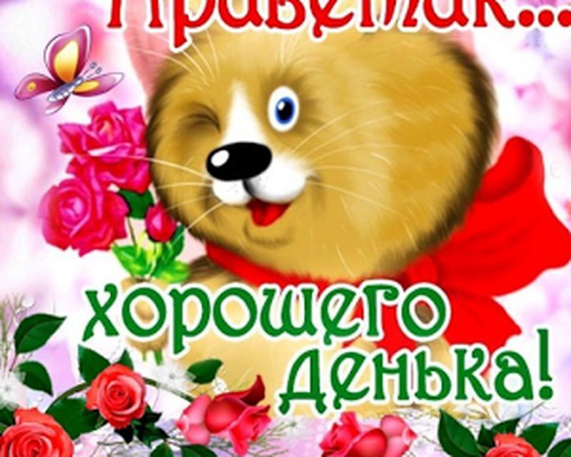 Открытки на все случаи жизни для андроид на русском языке