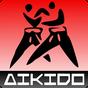 Aikido training 1.00