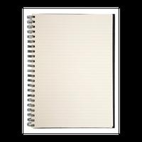Ícone do Bloco de Notas (Notepad) free