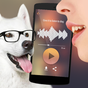 Translator for dogs Simulator 1.1