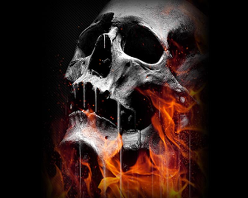Skull Wallpaper 1.0 free APK Android