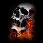 Skull Wallpaper 1.0
