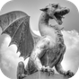Choice of the Dragon 1.5.2