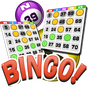 Bingo - การเล่นชนิดหนึ่ง 2.2.5