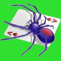 Ikona Spider Solitaire