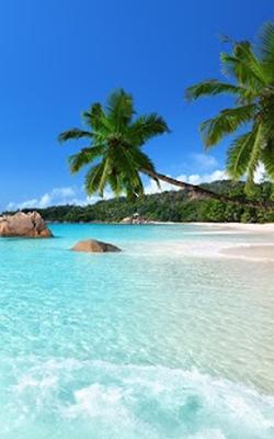 Spiaggia Sfondi Animati 210 Download Gratis Android