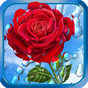 Chuva de Verão, Flores, HD LWP 1.9.0