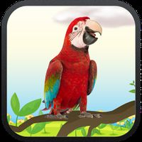 Icoană apk Real Talking Parrot