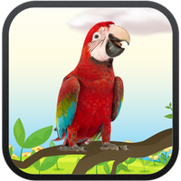 Real Talking Parrot APK Simgesi