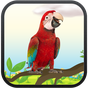 Real Talking Parrot 4.4