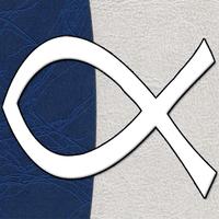 Biblia NVI apk icono