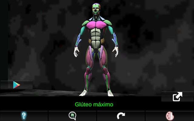 Sistema Muscular 3D (Anatomía) 1.9.3 Android - Descargar gratis