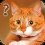 Спроси Кота Разговор Симулятор  APK