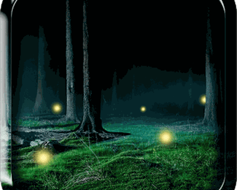 Fireflies Live Wallpaper Android Top Live Wallpapers