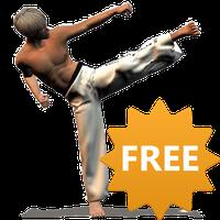 Taekwondo Forms (Sponsored) icon