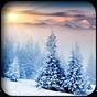 Winter Hintergrundbilder 5.0 APK