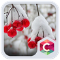 Snowy Cherry C launcher Theme 4.8.7