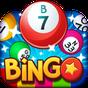 Bingo Pop 4.4.28