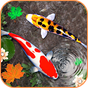 Koi Fish Wallpaper HD - 3D Fish Live Wallpaper 1.0 APK
