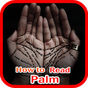 How to Read Palms  APK