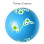 Nomao Camera 3.2 APK