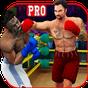 PRO Punch Boxing Champions 2018: Real Kick Boxers 1.0 APK