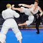 Royal Karate Training Kings: Kung Fu Fighting 2018 1.0.2