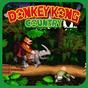 SNES Dnkey Kong Adventure 1.0.3