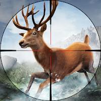 APK-иконка Охота на диких животных