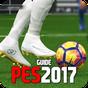 Tricks Pro Soccer For PES Evolution 2017  APK