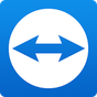TeamViewer for Remote Control 13.1.8817