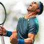 Ultimate Tennis 2.28.3102