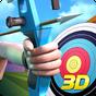 Archery World Champion 3D 1.4.14