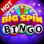 Big Spin Bingo | Free Bingo 3.47.11