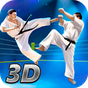 Karate Fighting Tiger 3D - 2 1.8.1