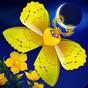 Flutter: Starlight 1.46