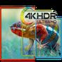 Fondos de pantalla 4K 7.2