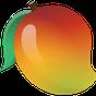 Mango Health 2.5.13